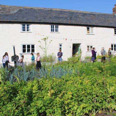Seasonal Nutrition: A River Cottage Course Review